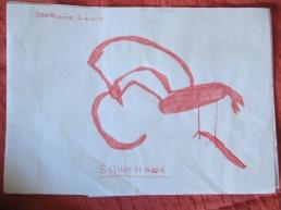 Hawk 1 - Steph